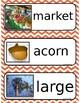HMH Spelling Word Cards Module 6 Week 1 (Third Grade)