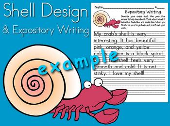 HMR Grade 1 Theme 05 Story 1 - Shell Design and Writing Activity