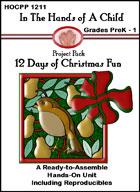 12 Days Of Christmas Fun