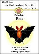 Bats Lapbook