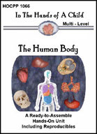 Human Body Lapbook