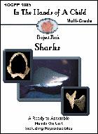 Sharks Lapbook