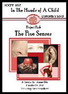 The Five Senses Lapbook