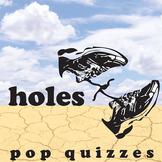 HOLES 10 Pop Quizzes (Comprehension Exit Tickets)