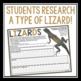 HOLES LIZARD RESEARCH ASSIGNMENT