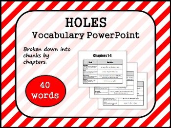 HOLES by Louis Sachar VOCABULARY PowerPoint
