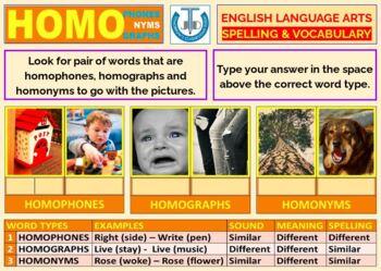 HOMOPHONES-HOMONYMS-HOMOGRAPHS: BUNDLE