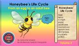 HONEY BEE FACTS: HONEYBEE'S LIFE CYCLE VOLUME 2
