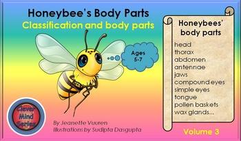 HONEYBEE FACTS: HONEYBEE'S BODY PARTS VOLUME 3