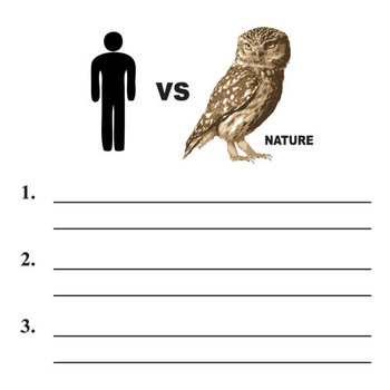 HOOT Conflict Graphic Organizer - 6 Types of Conflict