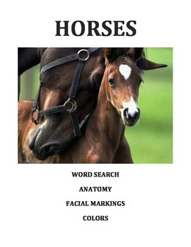 Horse Breeds Word Search Anatomy Markings Colors Coloring Not