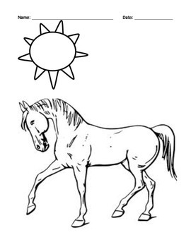 HORSE BREEDS: WORD SEARCH/ANATOMY/ MARKINGS/COLORS/COLORING (NOT GRADE SPECIFIC)