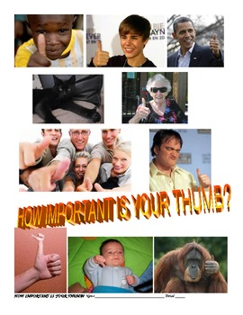 """PRIMATE THUMB COORDINATION """"HOW IMPORTANT IS YOUR THUMB?"""""""