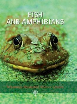 HQ Fish and Amphibian