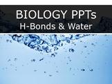 HS Biology - Biochem - Hydrogen Bonds & Water Properties PPT
