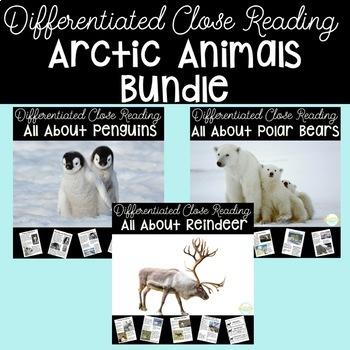 HUGE Nonfiction Unit- Arctic Animals- Differentiated Texts