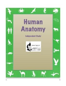 HUMAN ANATOMY  Independent Study