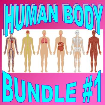 HUMAN BODY Bundle Package #1 (Worksheet, Projects, Activity, Quiz)