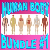 HUMAN BODY Bundle Set #1 (17+ Worksheet, Projects, Activity, Quiz and More!)