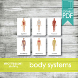HUMAN BODY SYSTEMS • Montessori Cards • Flash Cards • Thre