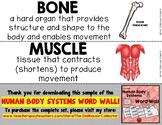 HUMAN BODY SYSTEMS WORD WALL Freebie Sample! Bone, Muscle