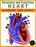HUMAN HEART SCAVENGER HUNT: An Activity