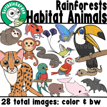 Habitat Animals: Rainforests of South America ClipArt