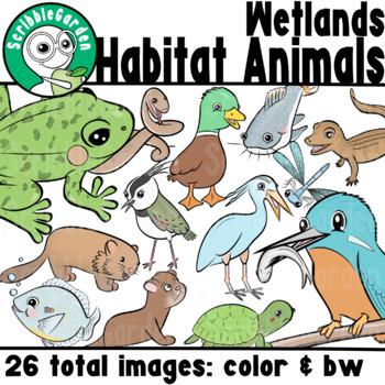 Habitat Animals: Wetlands  of the World ClipArt