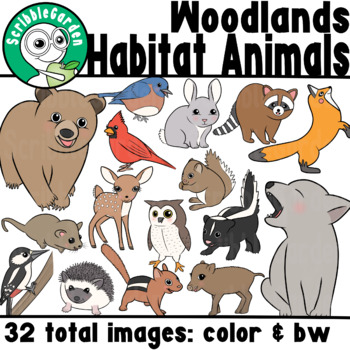Habitat Animals: Woodlands of North America and Europe ClipArt