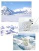 Habitat - Artic
