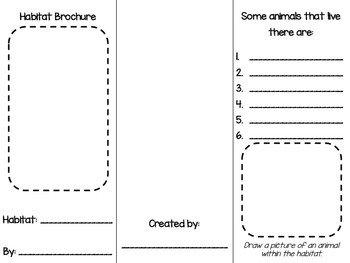 Brochure Templates Teaching Resources Teachers Pay Teachers