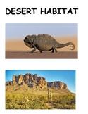 Habitat - Desert
