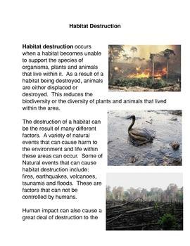 Habitat Destruction
