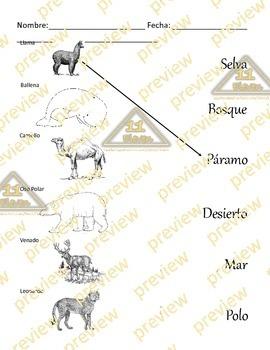 Habitat worksheet (Spanish)