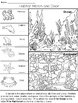 Habitat Match Worksheets