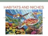 Habitat & Niche Presentation