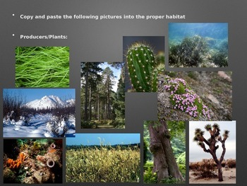 Habitat Picture Sort: Science Powerpoint Activity