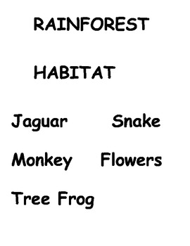 Habitat - Rainforest