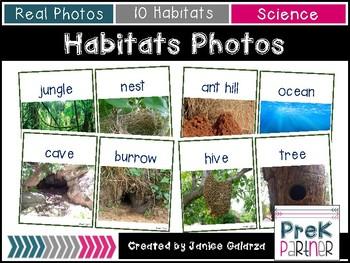 Habitat Real-Photos