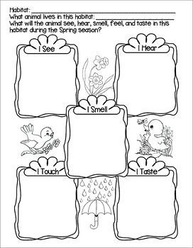 Habitat Seasonal Senses Activity Sheets