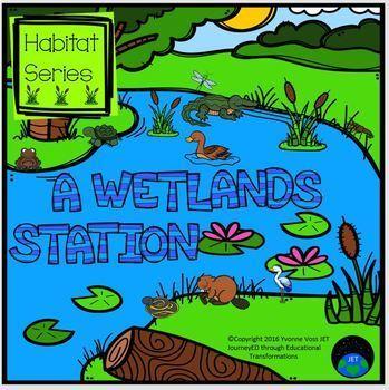 Habitat Series - A Wetland Station