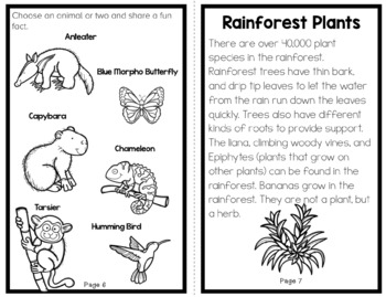 Habitat Series: All About The Rainforest Science Reader