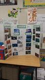 Habitat Sorting Board