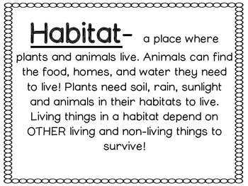 habitat worksheet by countless smart cookies teachers pay teachers. Black Bedroom Furniture Sets. Home Design Ideas