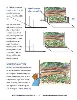 Habitat for Land Mammals