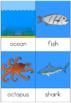 Habitat nomenclature cards