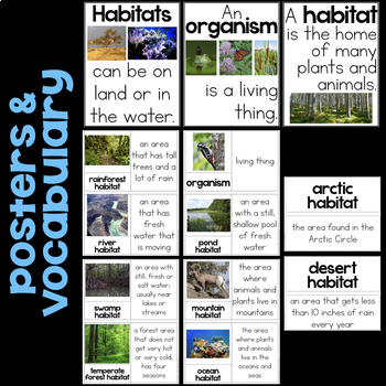 Habitats: Biodiversity and Humans - Second Grade Science Stations
