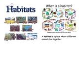 Habitats Book