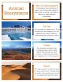 Habitats & Ecosystems