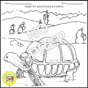 Habitats Ecosystems Crossword Puzzle